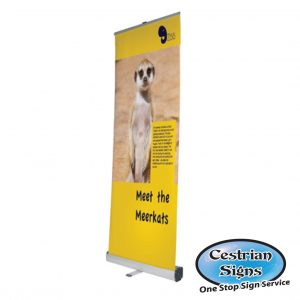 Pull Up Banners 600 mm Wide