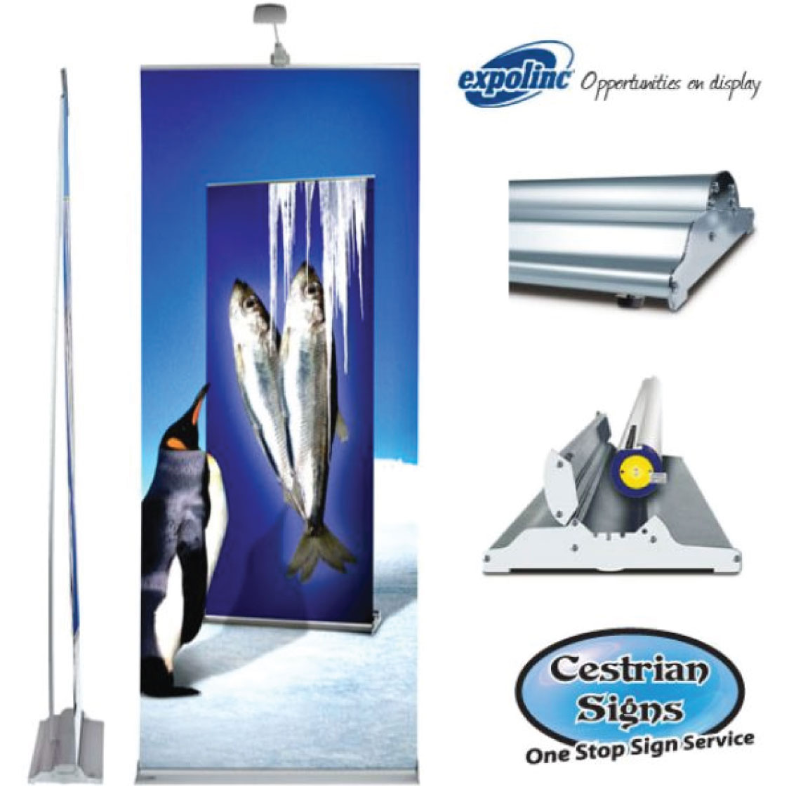 Pull up Banners 700 mm Wide